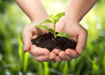 International Journal of Plant Animal and Environmental Sciences