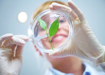Journal of Biotechnology and Biomedicine